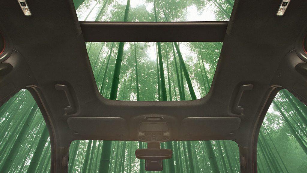 Photo of الخيزُران في صناعة السيارات، ما المواد الطبيعية الأخرى في سيارتك؟